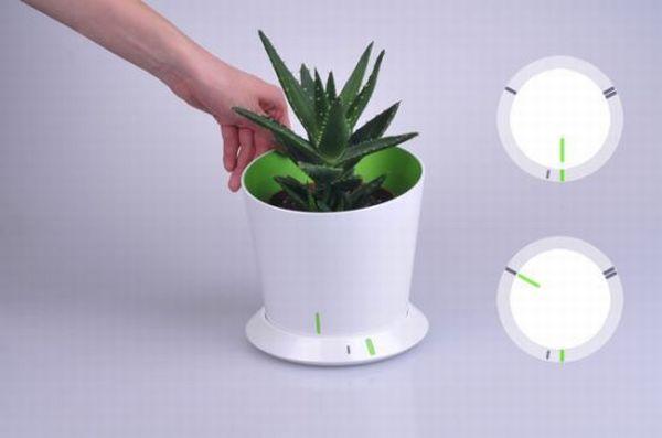 Trendy flower pot