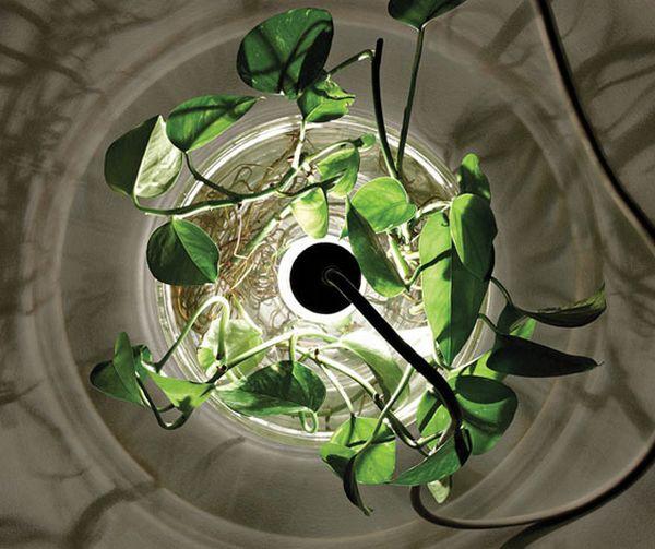 Vase & Leuchte lamps by Miriam Aust