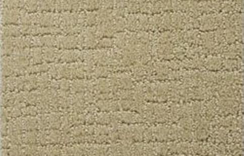 Stainmaster Carpet 10 Most Beautiful Hometone