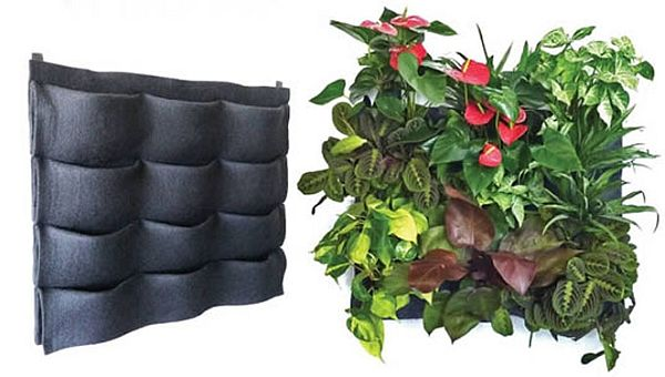 Essentially A Living Wall System That Doesnu0027t Involve A User Installing  Creepers All Over A Wall, Instead, The Living Wall System Kit Comes