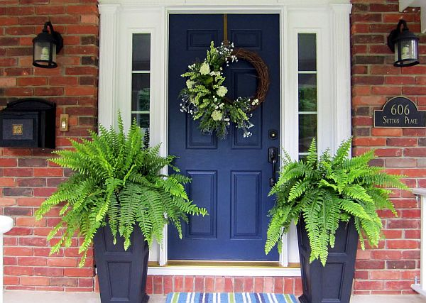 Ferns Are Simple Plants That Are Easy To Maintain And Provide Great  Coverage To The Front Door.