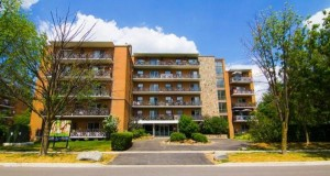 1374166026_529364266_3-Spacious-one-bedroom-apartment-for-rent-in-convenient-Brampton-location-Houses-Apartments-for-Rent