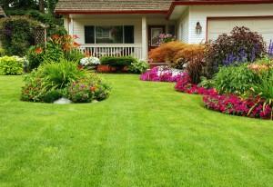 bigstock-Manicured-Yard-8665072