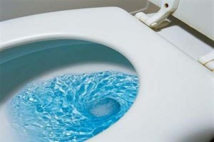 How-to-Fix-Running-Toilet-Dheck-The-Flush