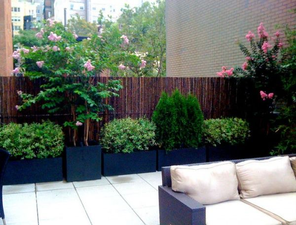 NY_Roof_Garden_Design_1_8