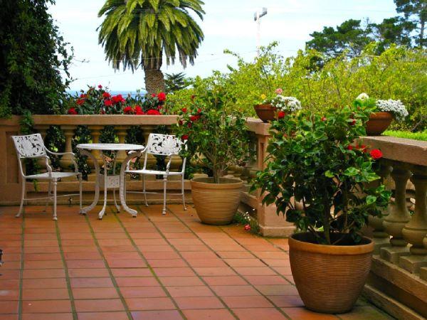 terrace-garden-ideas