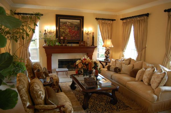 exclusive-decor-traditional-living-room
