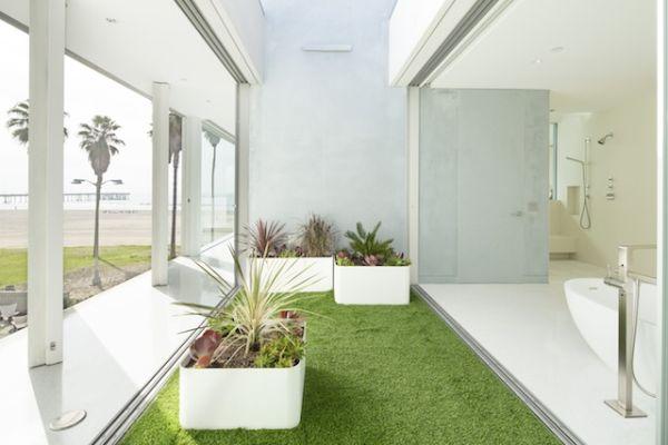 local-artists-multipurpose-california-beach-home-office-grass