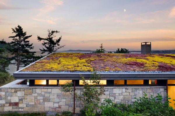 green roof for modern green living_3