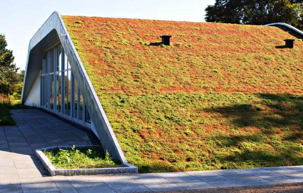 Constructing A Green Roof For Modern Green Living Hometone