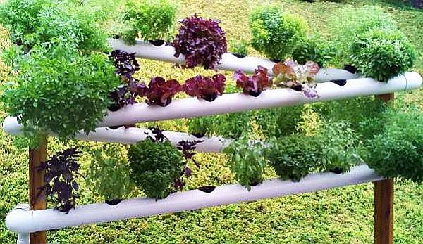 Simple yet creative ideas to build your gutter garden - Hometone ...