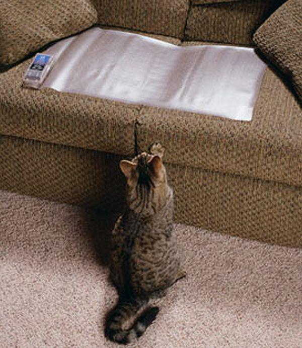 Aluminum Foil for Furniture Safe from Pets