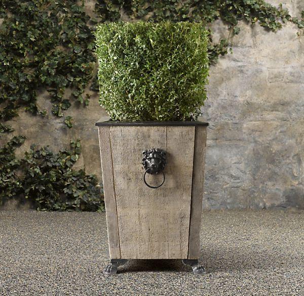 Boxwood Topiary_1