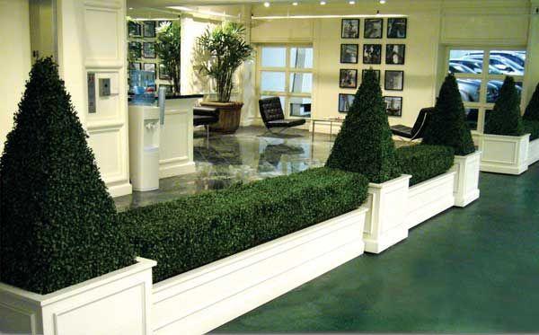 Boxwood Topiary_4