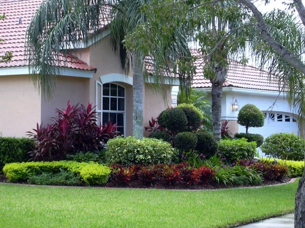 Landscaping and Choosing the Right Plants for Your Front Yard