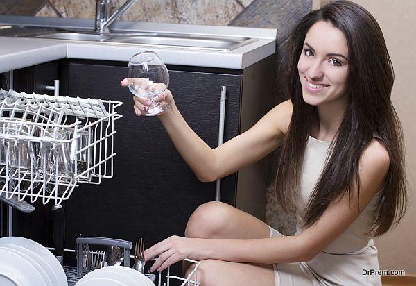 lady and Dishwasher
