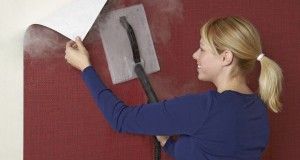 Removing wallpaper with the help of steam