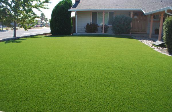 synthetic turf in your backyard 5