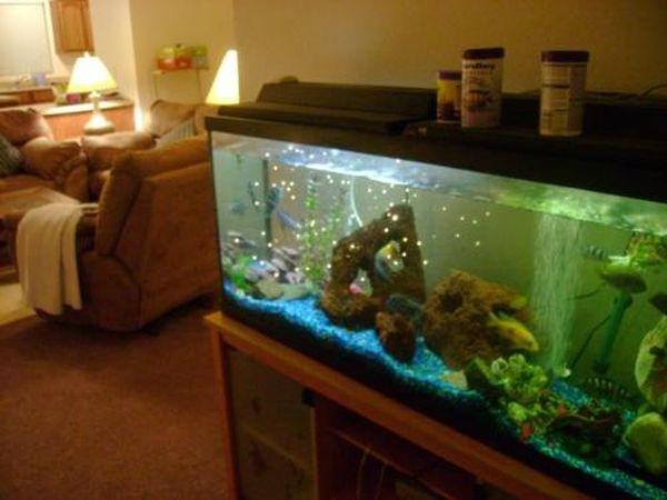 Covering the aquarium
