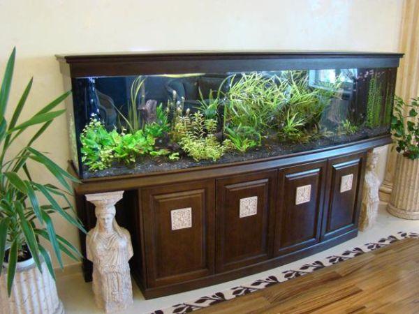 aquarium  decor (2)