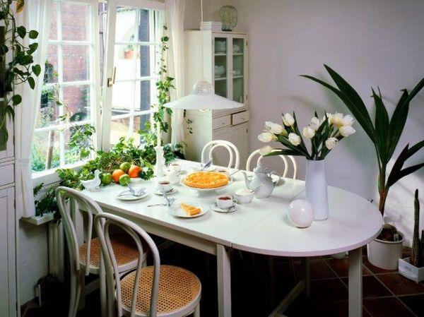 flowering plants in dining room