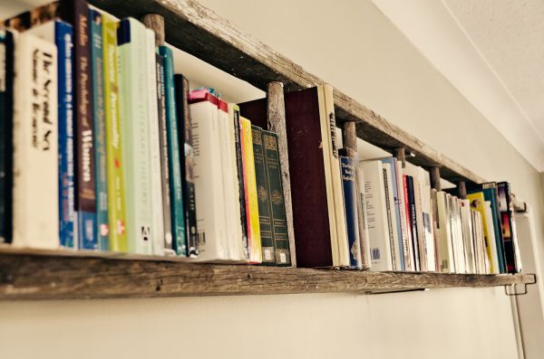 Ladder Book Shelf