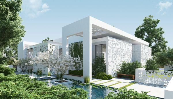 Zen garden  (4)