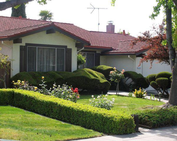 home garden (6)