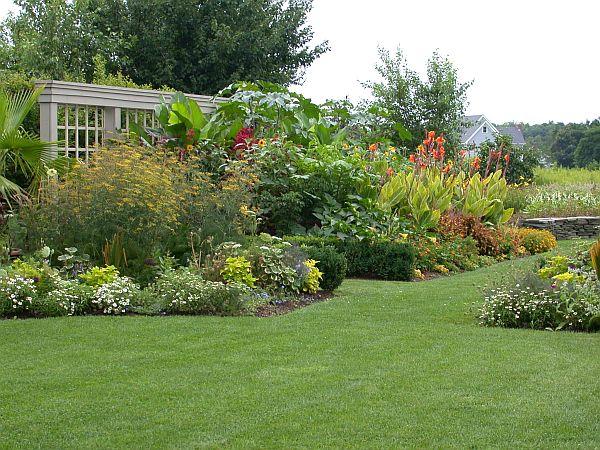lawn plantation