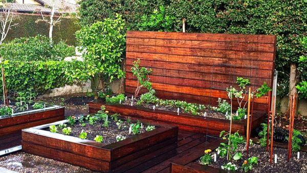 Veggie garden (2)