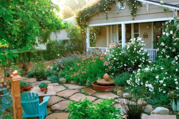 backyard improvement (5)