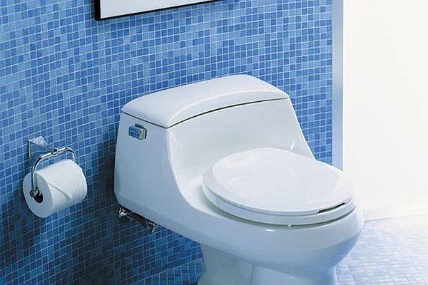 low flow toilets