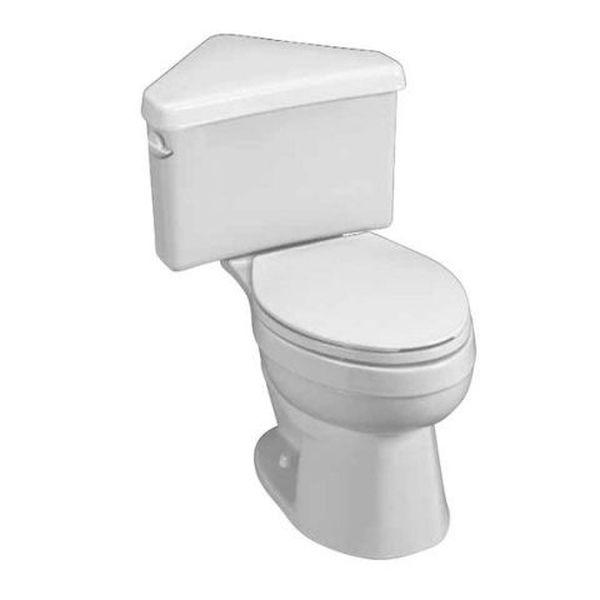American Standard Titan Pro Found Toilet