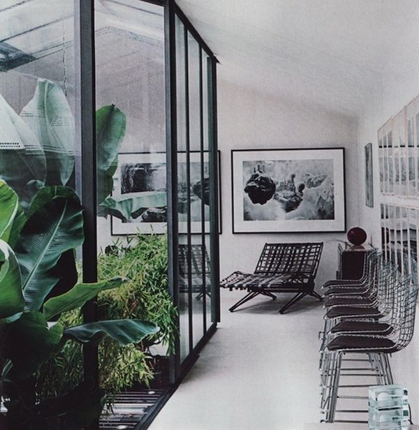Glass indoor garden
