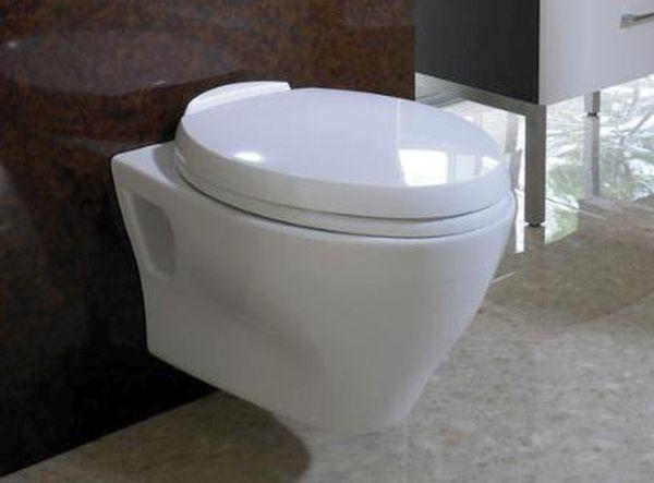 Toto Aquia Wall Hung Dual Flush Toilet