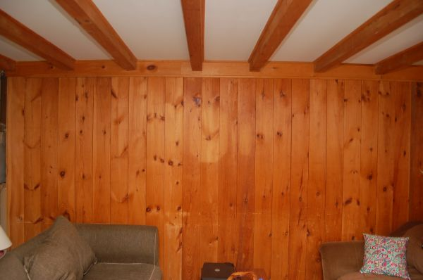 wood paneled walls (1)