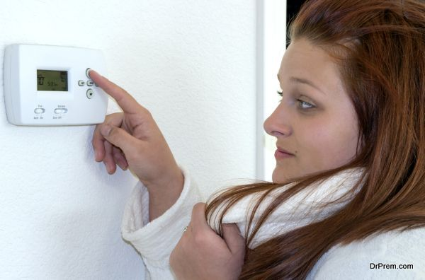 programmable thermostat (6)