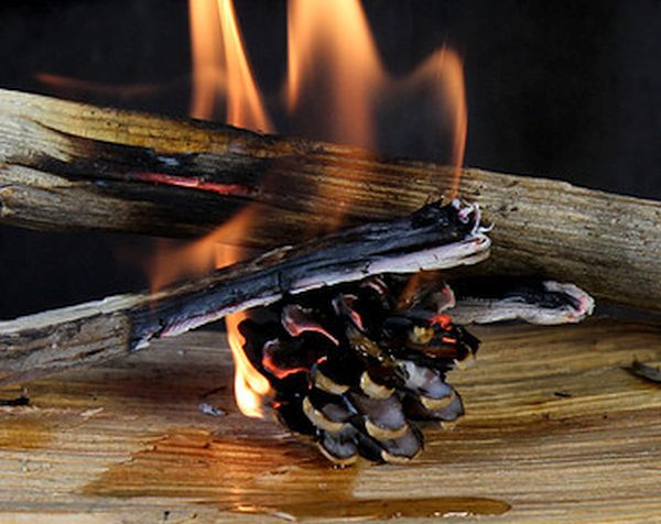 Spice Fire Starters