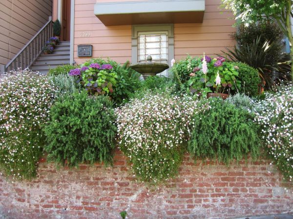 Install plant walls