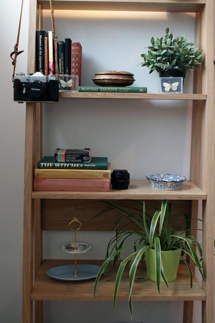 bookcaseimage