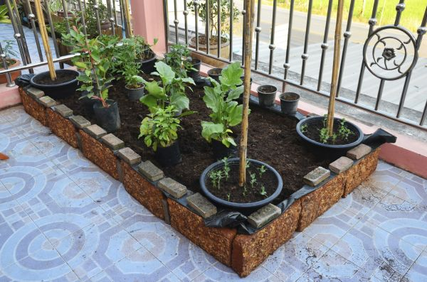 urban-gardening-ideas