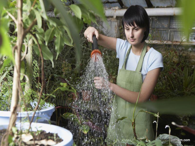 Lush Gardening Tips
