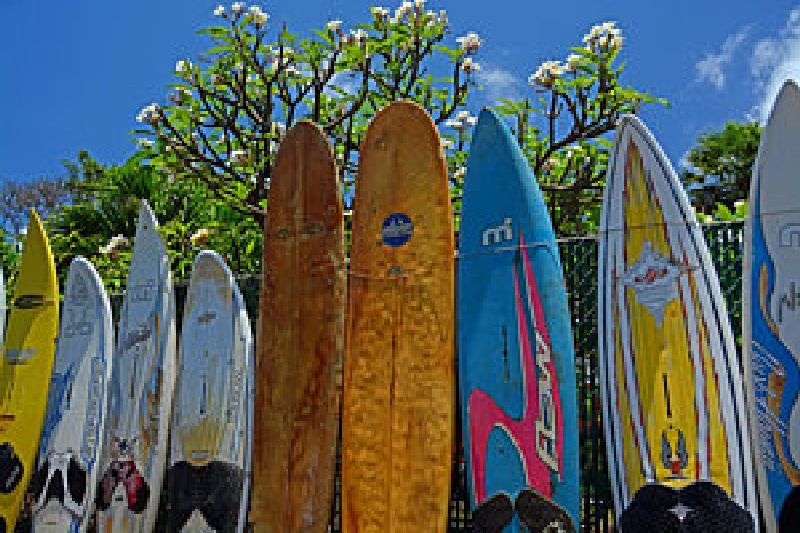 Old-surfboard-fence