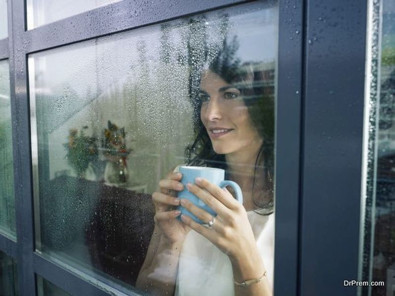 Replace Your Home's Windows