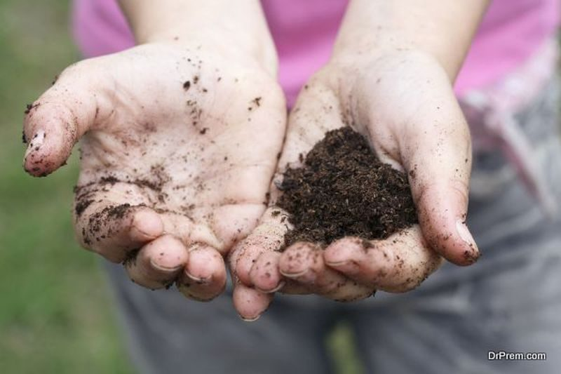 Preventing Compacted Soil