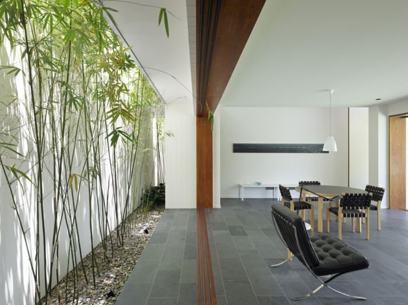 bamboo in interior design as an indoor garden