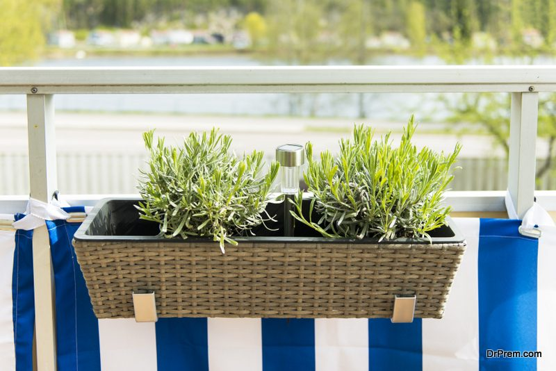 Window-Box-Herb-Garden