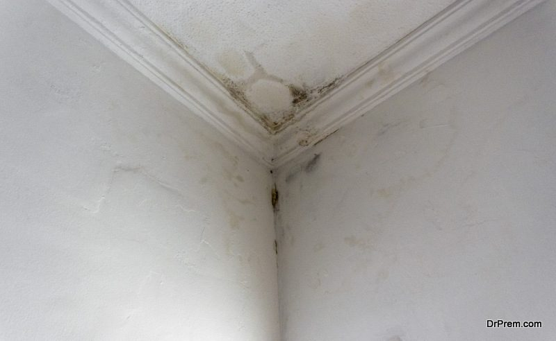 fixing a leaking ceiling