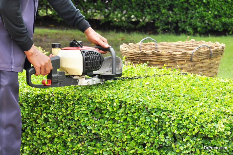 Lawn-Care-Provider