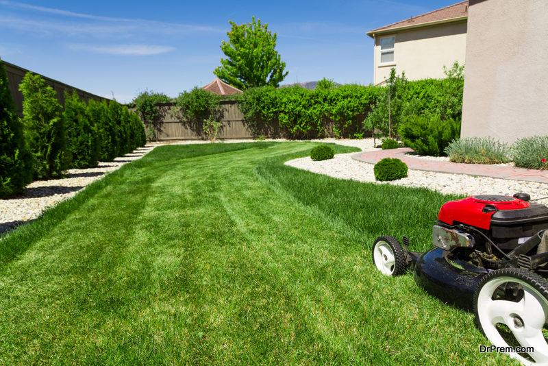 beautiful-lawn.